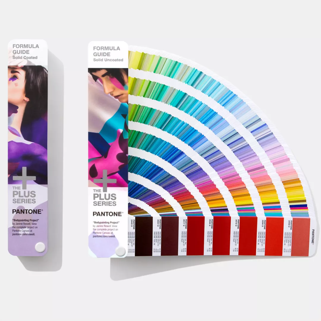 panel de color de muestra pantone